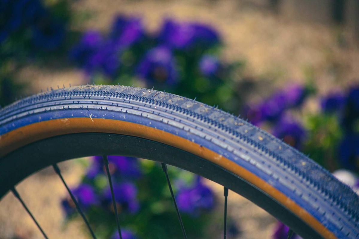 Limited Edition Panaracer Gravelking Tires